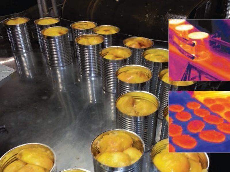Procesamiento alimentos Apliter Termografía